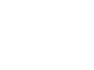 The Academy Clinic logo